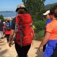 Caminhada até o Pântano do Sul