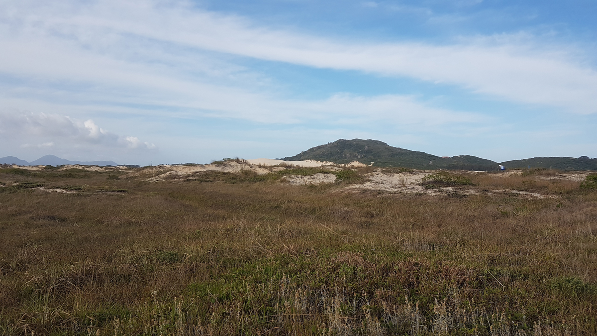 2016-11_XV-Caminho-Ilha_Moacir-Coschela_128.jpg