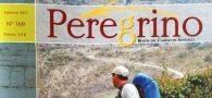 A publicação ocorreu na revista Peregrino